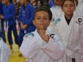 AULÃO DO UFC (16)